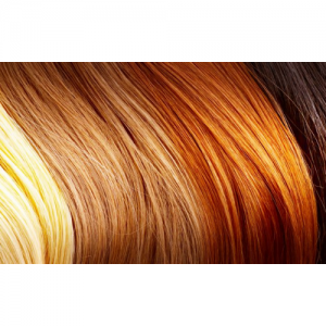 Tinte capelli Euphidra